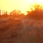 A TYPICAL SUNSET ON THE FARM IN WINTER ! by Magriet Meintjes
