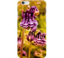 Spring Columbine iPhone Case/Skin