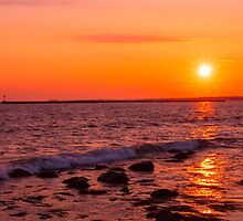 Spring Fever by JoeGeraci