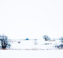 Winter landscape inspirated by Japanese art. by kskorza