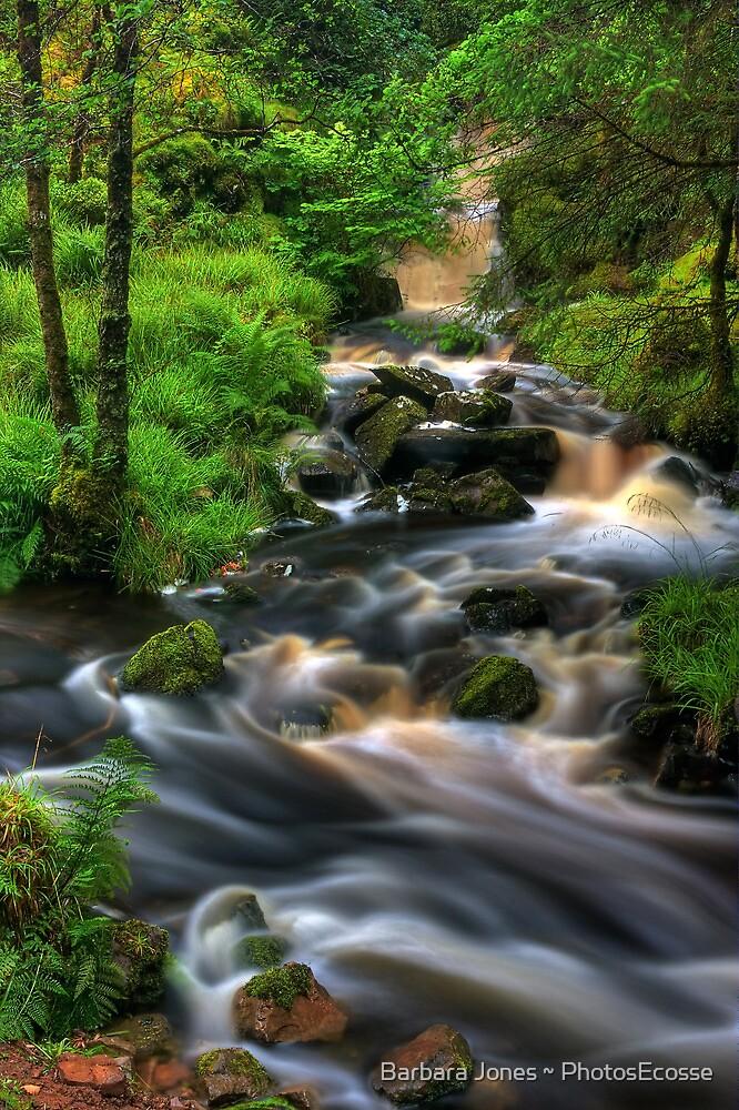 Highland Burn in spate, Summer. Scotland. by photosecosse /barbara jones
