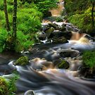 Highland Burn in spate, Summer. Scotland. by PhotosEcosse