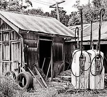 The Old Farm Shed by SandyA