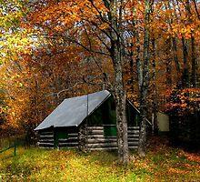 Autumn Scene by snehit