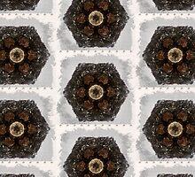 Great Hill Hexagon by DeneWest