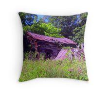 shootin' Bob's cabin Throw Pillow
