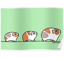 Mother Guinea-pig with Babies Poster
