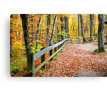Beautiful Autumn Walkway Canvas Print
