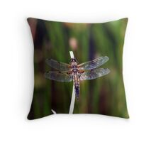 Four-spotted Chaser Dragonfly Throw Pillow