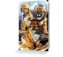 Wild cubs. Greeting Card