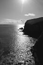 Coastline by Paul Finnegan