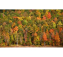 autumn landscape  Photographic Print