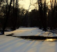 Casting Shadows by Paul Finnegan
