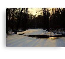 Casting Shadows Canvas Print