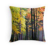 Colorful Autumn trees  Throw Pillow