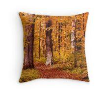 Autumn Walkway  Throw Pillow
