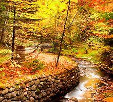 Autumn landscape  by snehit
