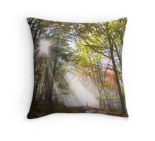 Morning sun rays   Throw Pillow