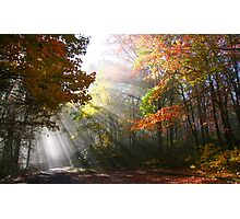 Morning sun rays  Photographic Print