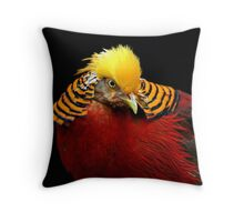 Multi Colored Bird  Throw Pillow