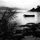 """Yellow Submarine"" at Namchengwa, Lake Malawi by Tim Cowley"