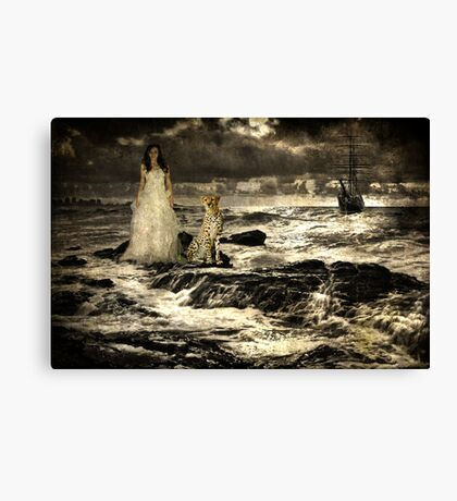Sea Siren Canvas Print