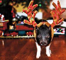 Christmas Pig by Beatriz  Cruz