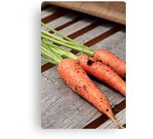 Fresh Carrots Canvas Print