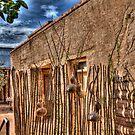 Presidio-2 Tucson AZ by Kenn Jensen