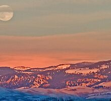 Moonrise Over Jackson Hole by A.M. Ruttle