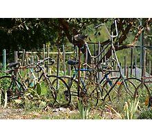 Giants Cycle Photographic Print