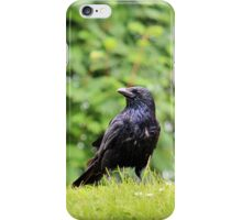 This is my hill iPhone Case/Skin