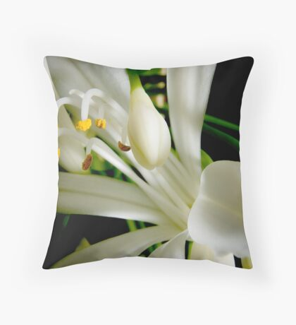 damaged Throw Pillow