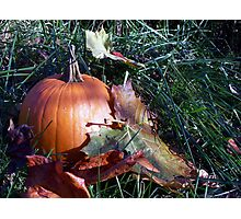 Pumpkin Time Photographic Print
