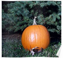 Pumpkin Time 3 Poster