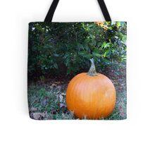 Pumpkin Time 6 Tote Bag