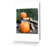 Pumpkin Time 7 Greeting Card