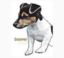 """Snapper"" Russell Terrier by Dick  Iacovello"
