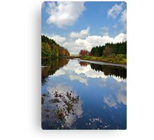 Long Pond Cloud Reflection Landscape Canvas Print