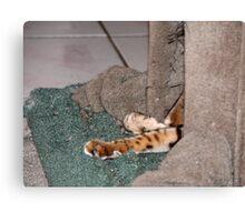 Tiger's Lair Canvas Print