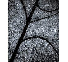 Moon Shadow Photographic Print