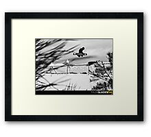 Back Side 360 Method grab Framed Print