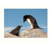 """Adelie Penguin and Chick ~ """"Well......if you say so dad"""" Art Print"""
