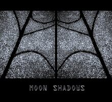 Moon Shadows by Tom Vaughan