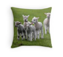 Pure New Zealand Throw Pillow