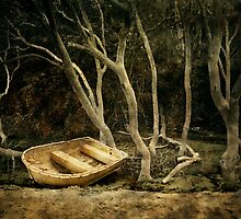 Old Boat, Echo Point by Jan Glover