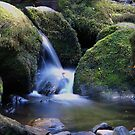 Mossy Rocks by CezB