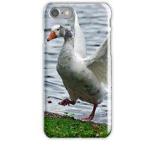 Goose In a Flap iPhone Case/Skin