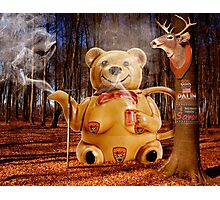 Does a Mama Grizzly drink tea in the woods? Photographic Print