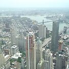 Aerial View of  Lower Manhattan, Manhattan, Brooklyn Bridges, from One World Observatory, World Trade Center Observation Deck, New York City  by lenspiro